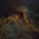 IC1848 Crop SHO,                                yock1960