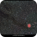 IC 5146, The Cocoon Nebula in Cygnus,                                Mark L Mitchell