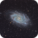 The Triangulum Galaxy (M33),                                Will Czaja
