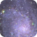 Triangulum Galaxy in Narrowband,                                miorisaki