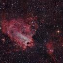 Nebulosa Omega,                                Andrés Ruiz de Va...