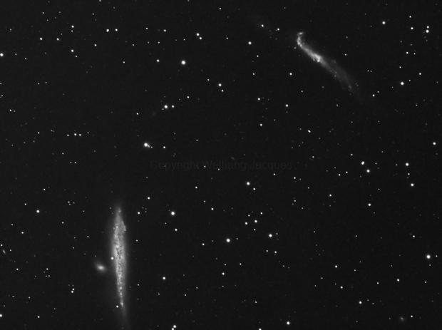 NGC 4656 & 4631,                                Walliang Jacques