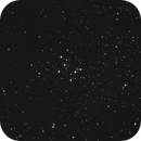 M29 Open Cluster,                                Serge