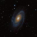 M81 Bode's Nebula,                                Sean McCully