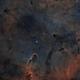 IC1396 HOO,                                  Astrovetteman