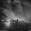 Barnard 33 horsehead nebula & NGC2024 flame nebula Ha.,                                lukfer
