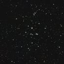 Messier 44- El pesebre,                                Fernando