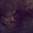 NGC7000-Cygne,                                Anthony F.