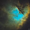 NGC 281 • Pacman Nebula in SHO,                                Douglas J Struble