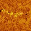 Group of Sunspots AR2671 19.08.2017,                                Antanas Paulauskas