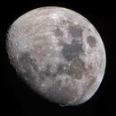 Waxing Lunar Detail,                                Shannon Calvert