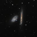 NGC 4298 and 4302,                                Frank Zoltowski