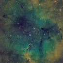 IC 1396,                                Astro_Sholo