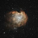 NGC 2174 Monkey Head Nebula,                                Robert Browning