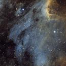 Pelican Nebula IC5070,                                Jari Saukkonen