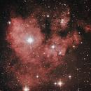 NGC 7822,                                Christian Coppe