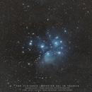 M45 - The Pleiades - wide field,                                Christophe Perroud