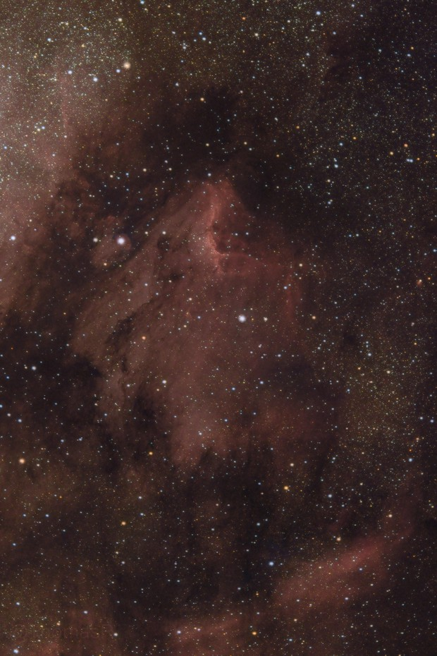 IC 5070 - The Pelican Nebula,                                ThomasR