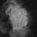 Lagoon Nebula in Ha,                                David Nguyen