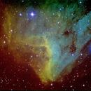 IC 5070 Pelican Nebula SHO,                                Peter Bresler