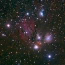 NGC2170 in Monoceros,                                TWFowler
