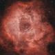 Rosette / Caldwell 49,                                Dale Ghent