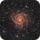 IC342 - A Jewel in Camelopardalis,                                Jim Morse