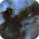 Cygnus Wall and Pelican Nebula Mosaic,                                Phil Brewer