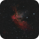 NGC 7380  - Star Cluster and the Wizard Nebula,                                Colm O'Dwyer