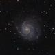 M101 galassia a spirale,                                Giuseppe Nicosia