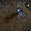 NGC 6729 Corona Australis,                                Frank Iwaszkiewicz