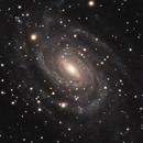 NGC 6384,                                Gary Imm
