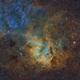 Sh2-132 la nébuleuse du lion SHO,                                astromat89