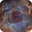 Inside the Rose - NGC 2244 in SHO,                                Ariel Cappelletti