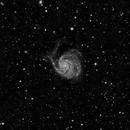 M101 - Luminance Only,                                Ben Koltenbah
