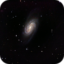 NGC 2903,                                Matthias Mändl