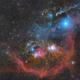 The Colours of Orion,                                Gabriel R. Santos...