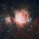 M42 HDR,                                redman21