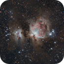 Orion widefield,                                katia mautone