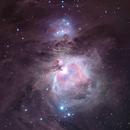 The Orion Nebula & Running Man Nebula,                                David Schlaudt
