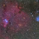 NGC2264  IC2169,                                Atsushi Ono