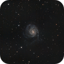 M101 with DSLR -- under influence of the moon,                                Tobias Artinger
