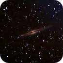 NGC 891,                                Mike Pelzel