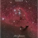 Cederblad 51 Crop version,                                  Maicon Germiniani