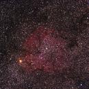 IC1396 Champ large,                                LeCarl99