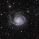 M101,                                Bill Arden