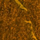 Solar chromosphere - Filaments,                                Stephan Reinhold