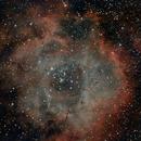 NGC 2244 rosette nebula,                                Nils Goury