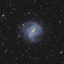 Southern Pinwheel Galaxy  - M83,                                Rogerio Alonso