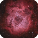 Rosette Nebula,                                Jared Roberts